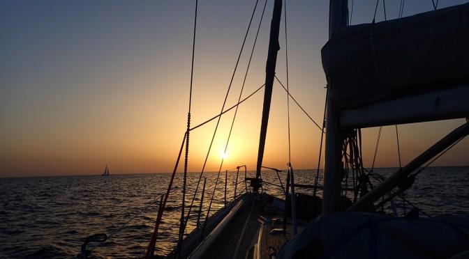 Santa Cruz de Tenerife – Nordkaperen og Auras nye gast