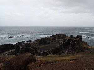Hammerhus på Cap Verde?