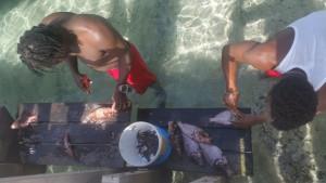 Lokale fiskere