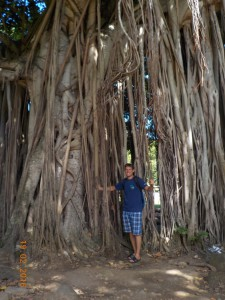 Martin ved træet, som Barbados er opkaldt efter