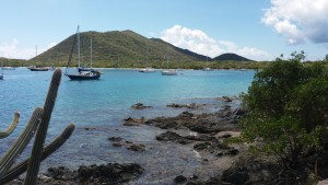 Ved Trellis Bay