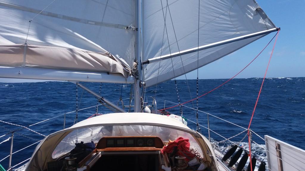 Aura sejler butterfly, dog kun i tre-fire timer på hele turen