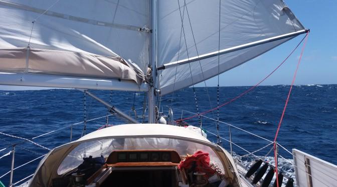 Nordatlanten - 360 graders havudsigt i konstant bevægelse